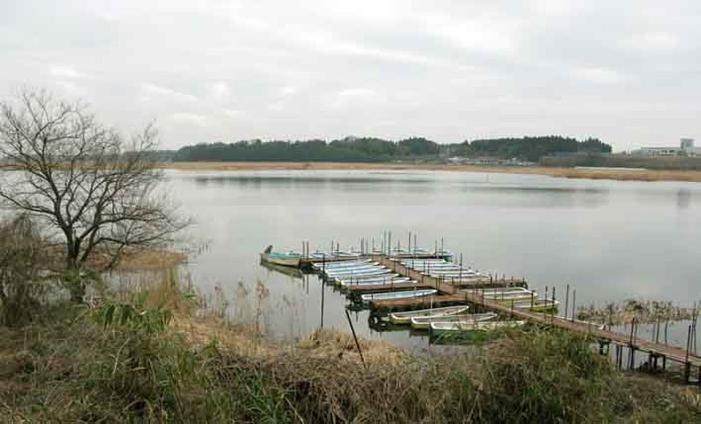 http://imdaily.net/files/gimgs/th-19_lake.jpg